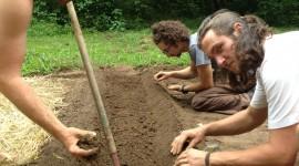D.D.&E. Planting Seeds